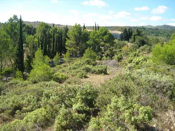 Agence Brayer-Hugon cabinet d'architecture à Nîmes Languedoc Roussillon | Article loi Alur zones naturelles | Presse et actualités